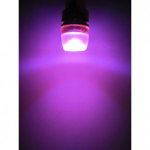 (new) W5W T10 1W highpower glow-head LED paars